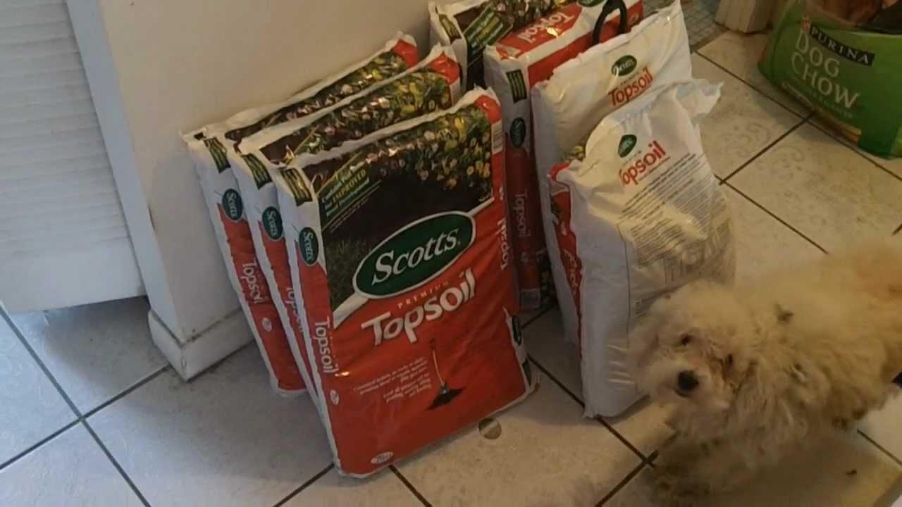 Make free DIY self watering grow bag for vegetable gardening Larry ...