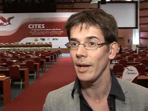 'Strong lobbying' behind Japan's success at CITES