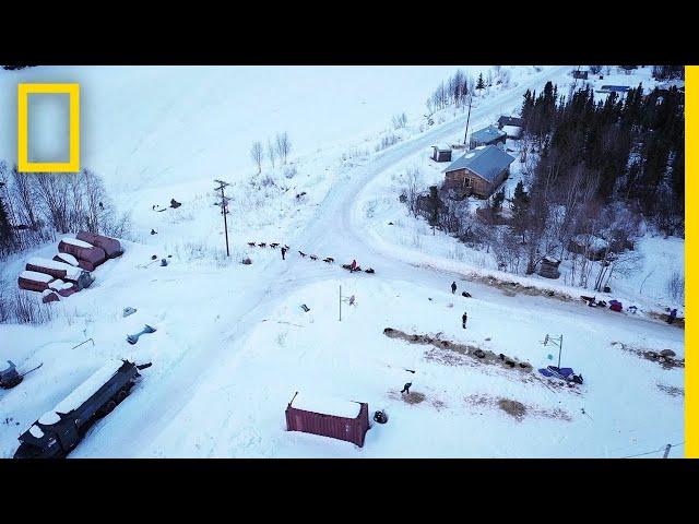Capturing the Iditarod - Behind the Scenes   Life Below Zero