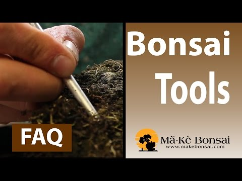 111) Bonsai Tools for Beginners   Which One's do I Start With?