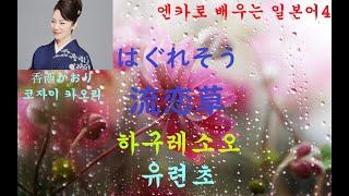 엔카로 배우는 일본어 4 流恋草 유련초 はぐれそう haguresou 香西かおり 코자이카오리 こざい かおりKozai Kaori.