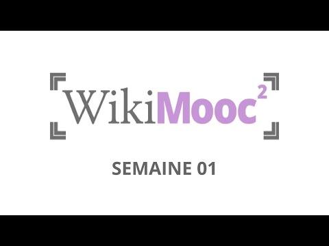 WikiMOOC #2 : Wikipédia, historique et fonctionnement (1.1-B)