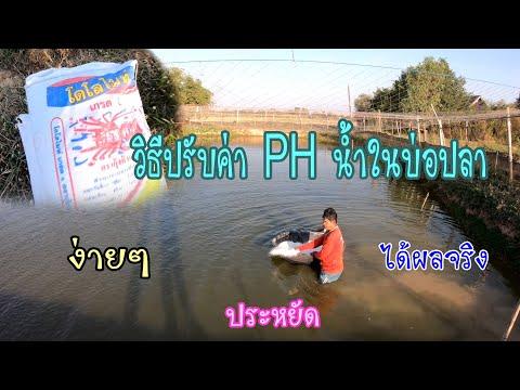 วิธีปรับค่า PH น้ำในบ่อปลา แบบง่ายๆ