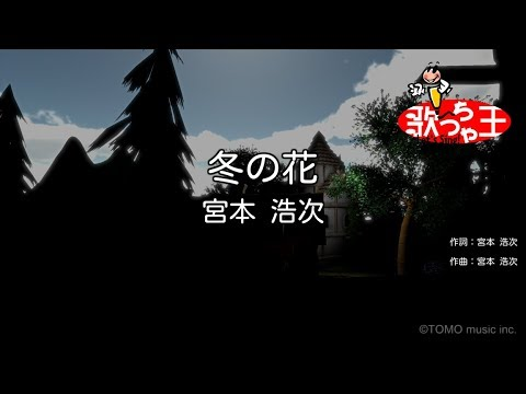 【カラオケ】冬の花/宮本 浩次