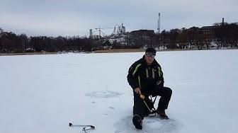 Kalastus - vesitilanne Töölönlahdella