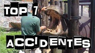 ACCIDENTES EN ZOOLOGICOS // WTT!