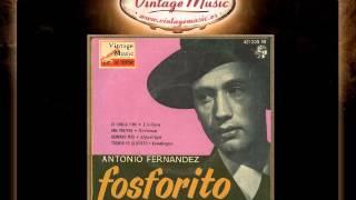 Fosforito -- Hermano Mío (Siguiriya) (VintageMusic.es)