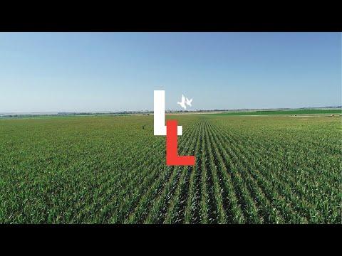 Nebraska Farm Land For Sale | Ogallala Pivot Irrigated Farm | Ogallala, Nebraska