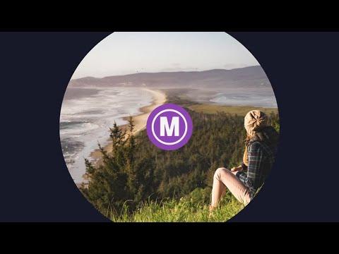 Shape Logo Premiere Pro Templates