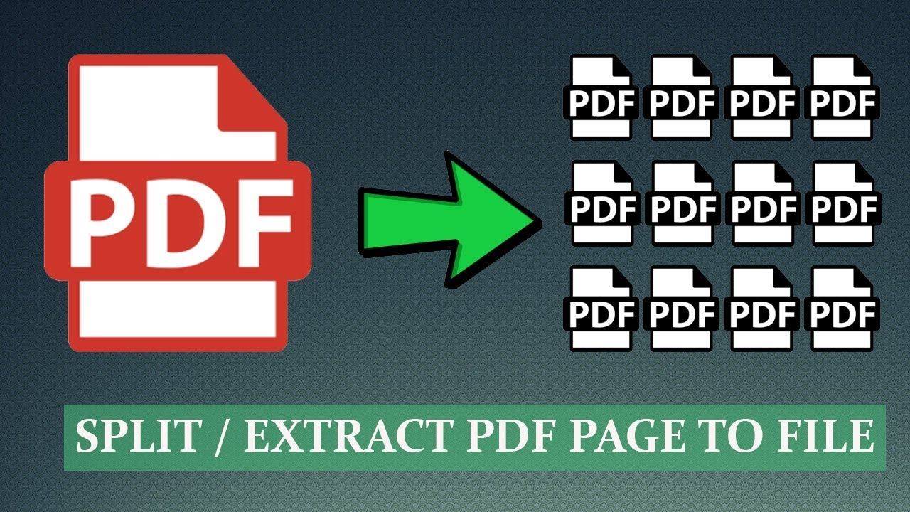 extract files from pdf