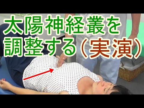 やさしい内臓マニプレーション〜その3・神経叢