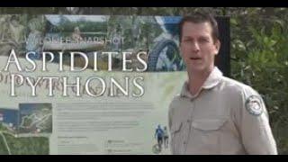 Wildlife Snapshot - Aspidites Pythons