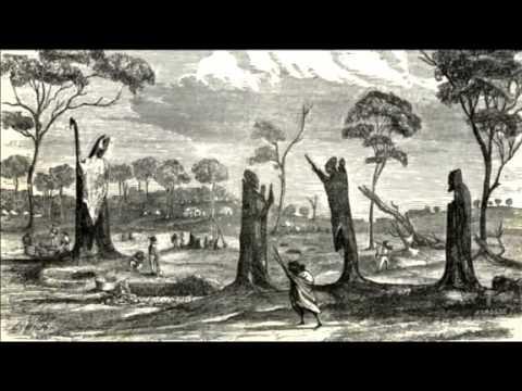 The Bendigo Creek Story