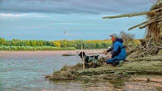 МЕЧТА СБЫЛАСЬ Супер рыбалка на закидушки Пять ночей на острове с Ромкой Рыбалка с ночёвкой