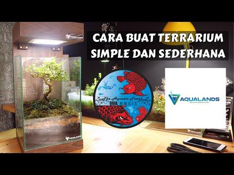 terrarium-bonsai---cara-membuat-terrarium-simple-dan-sederhana