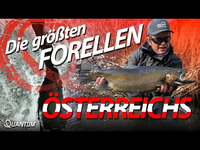 Forellenangeln am Fluss - Tipps & Tricks vom Profi - Die größten Forellen Österreichs!