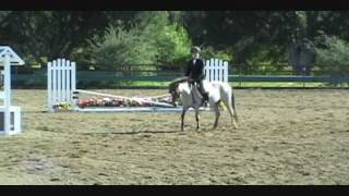 Mighty Mouse Small Hunter Pony for Sale or Lease---Hunter Under Saddle Class March 2009