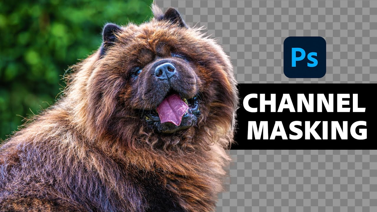 Insanely Difficult Selections MADE EASY with Alpha Channels in Photoshop