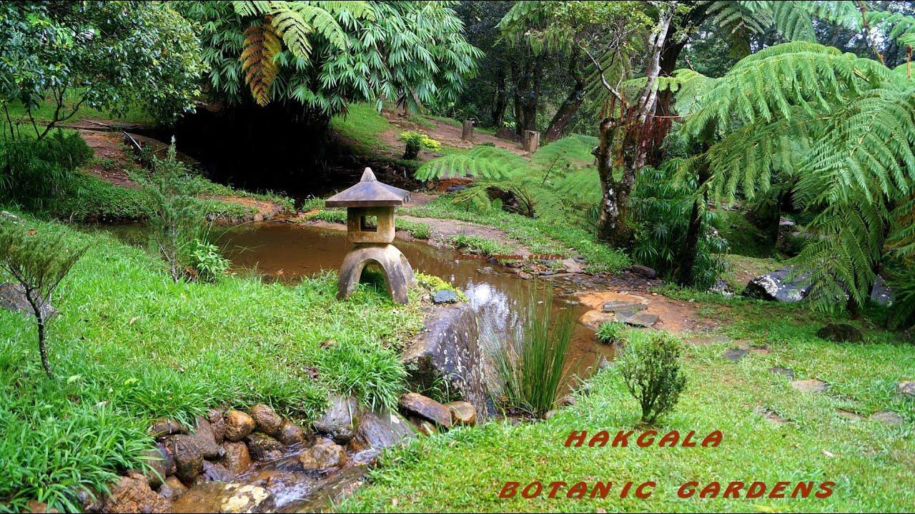 Hakgala botanic gardens seetha amman temple in sri lanka for Garden designs in sri lanka