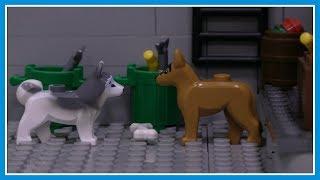 Бродячие собаки и бездомные животные - Lego Мультфильм