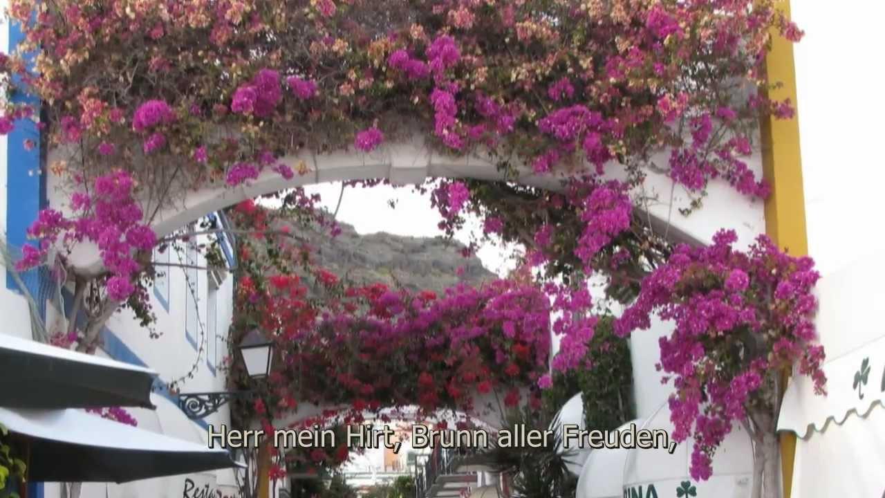 EnglischDeutschÜbersetzungen für sermon im OnlineWörterbuch dictcc Deutschwörterbuch