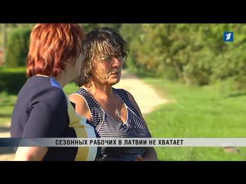 ПБК: Сезонных рабочих в Латвии не хватает