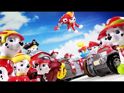 PAW PATROL MARSHALL FRIENDS GET TOGETHER!