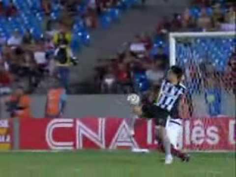 Os gols do Botafogo 2010 - Flamengo 1 x 2 Botafogo...