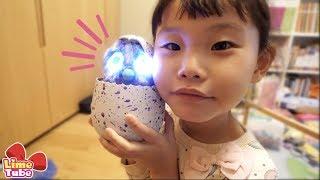 해치멀스 알 부화시키기 서프라이즈 에그 장난감 놀이 LimeTube & Toy 라임튜브