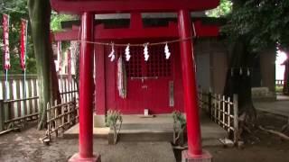 中瀬天祖神社 東京都杉並区