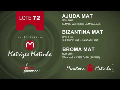LOTE 72 Matrizes Matinha 2019