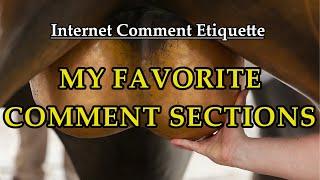 """Internet Comment Etiquette: """"My Favorite Comment Sections"""""""