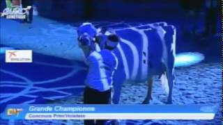 Eurogénétique 2015 - Prim'Holstein - Grande Championne