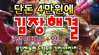 4만원으로 김장고민해결꿀팁 절임배추예약 김장용배는 청하…
