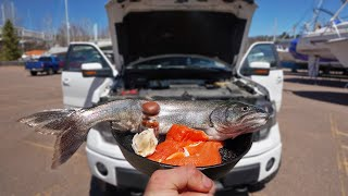 Cooking Fish on my Truck Engine (Catch and Cook)