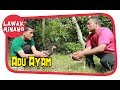 Download Adu Ayam #LawakMinang70