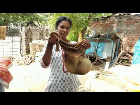 எளிமையா ஆட்டுக்குடல் சுத்தம் /Aattu Kudal Clean 🐐 in Tamil by Minutes Kitchen