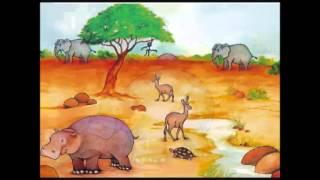 Nordin het nijlpaard