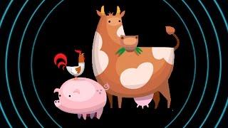 Мясо из пробирки Memphis Meats: проект по созданию искусственного мяса и мясных продуктов -Indiegogo
