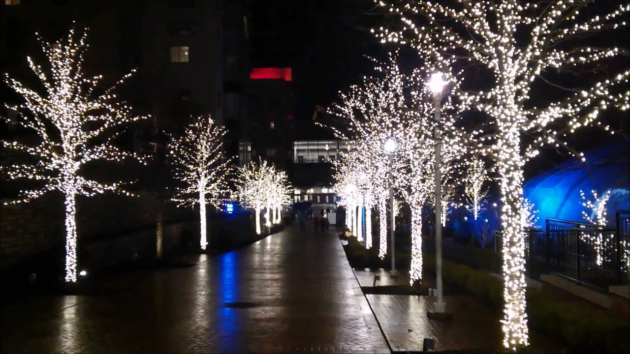 christmas lights in national harbor maryland - Christmas Lights Maryland