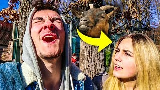 Yvon besucht ihre Verwandten im Zoo