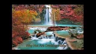 Vibrant Vital Water® - Life Spirals