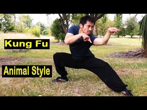 Kung Fu Animal Style With Stances Training