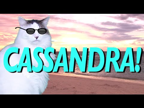 Happy Birthday Cassandra Epic Cat Happy Birthday Song Youtube