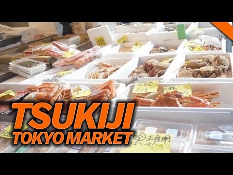 EATING AT THE FAMOUS TSUKIJI FISH MARKET IN TOKYO, JAPAN // Fung Bros World Tour