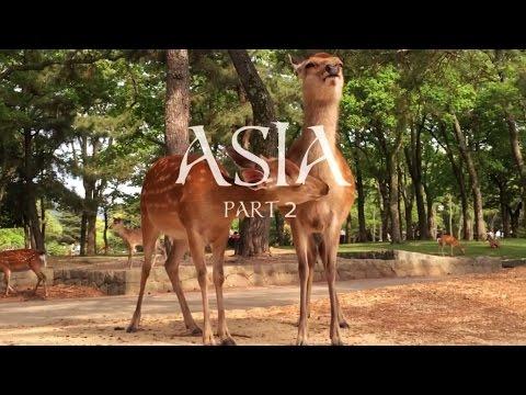 Vegan Travel in Asia (Part 2)