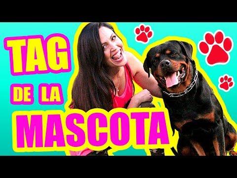 Mi Perro Rottweiler! Tag de la Mascota ft KarimRott - SandraCiresArt