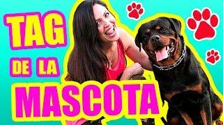 Mi Perro Rottweiler! Tag de la Mascota ft KarimRott - SandraCiresArt thumbnail