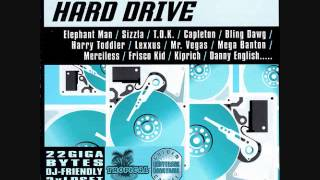 Hard Drive Riddim Mix (2002) By DJ.WOLFPAK