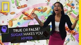 True or False? Sugar Makes You Hyper | Pop Quiz